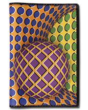 Illusion passport cover