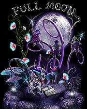 Полотно «Full Moon»